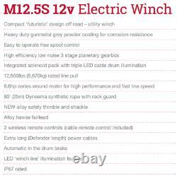 M12.5s Treuil Électrique 12v Avec Corde Synthétique 2 Commandes Sans Fil Terrafirma Tf3320